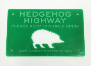 Have You Considered - Hedgehog Highway